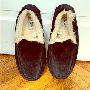 Men's ugg ascot slippers